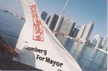campaign flag